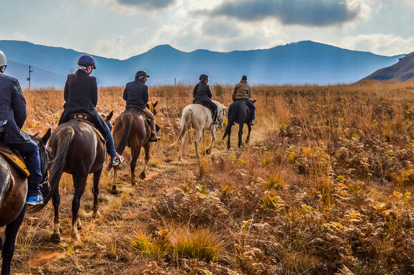 Attendee engagement group horseback riding